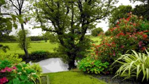 Private Garden with trees-compressed