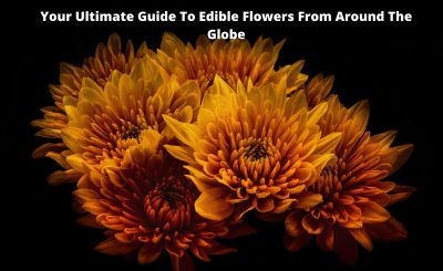Your Ultimate Guide To Edible Flowers From Around The Globe