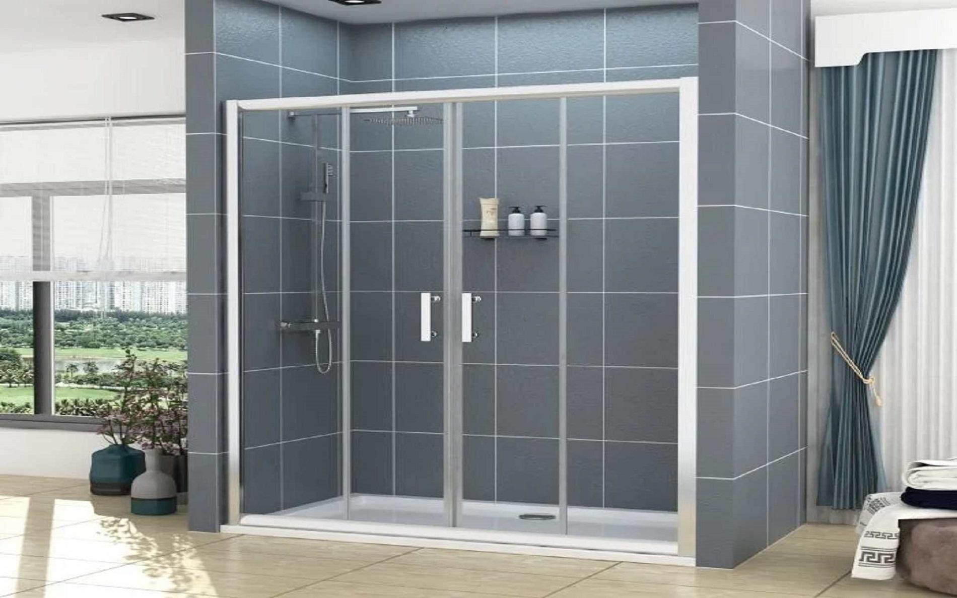 Noble 6mm Double Sliding Shower Door